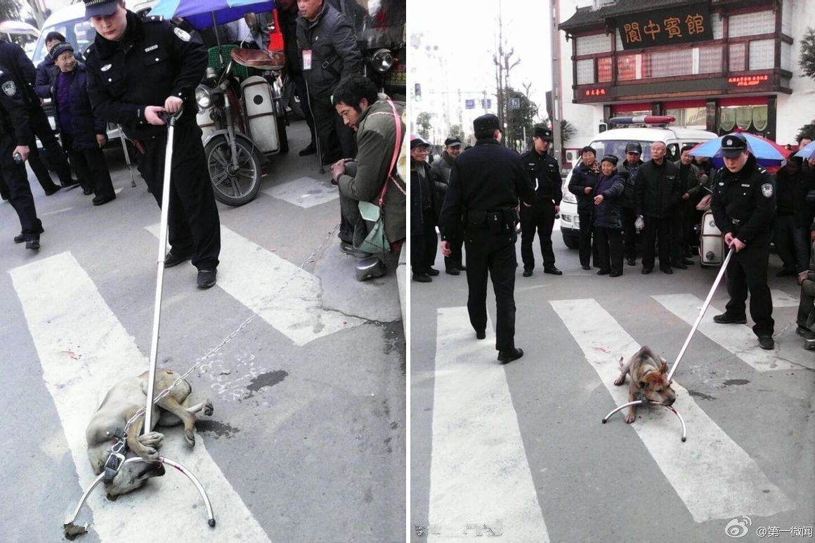 Sickening photos show Chinese cops beating a beggar's dog to death (Graphic)
