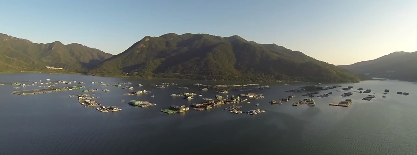 WATCH: Aerial video will make you want to be in HK
