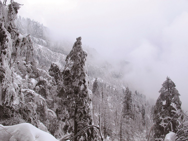 Travel: Hiking the snowy climes of Mount Emei