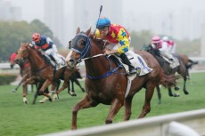 No, horse racing is not coming back to China