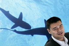 Yao Ming just gave the most inane/amazing Q&A ever