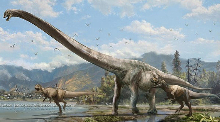 Chinese dinosaur had crazy, super-long neck