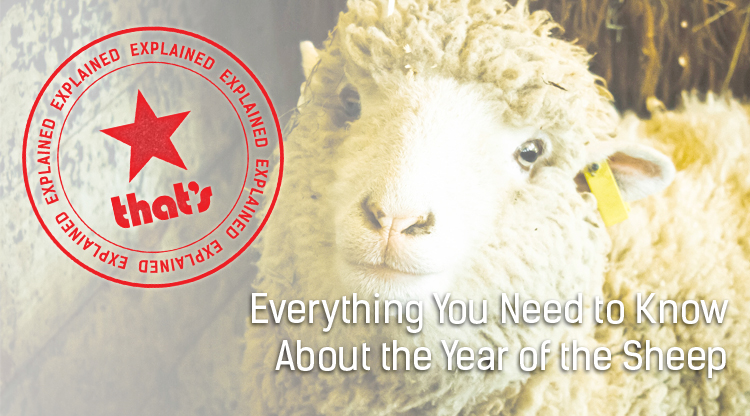 Explainer: Everything You Need to Know About the Year of the Sheep
