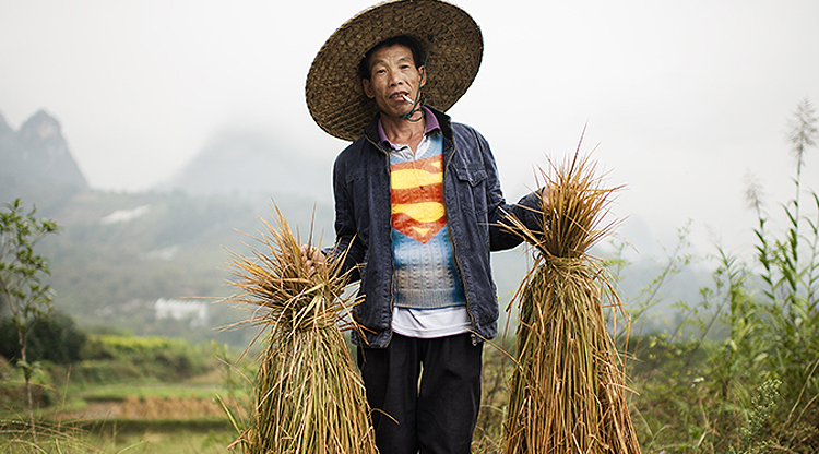 China's new 'Super Farmers' are like regular farmers but richer