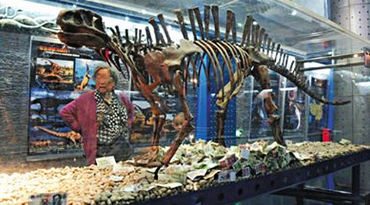 People won't stop cramming money into Beijing museum's dinosaur exhibits 'for good luck'